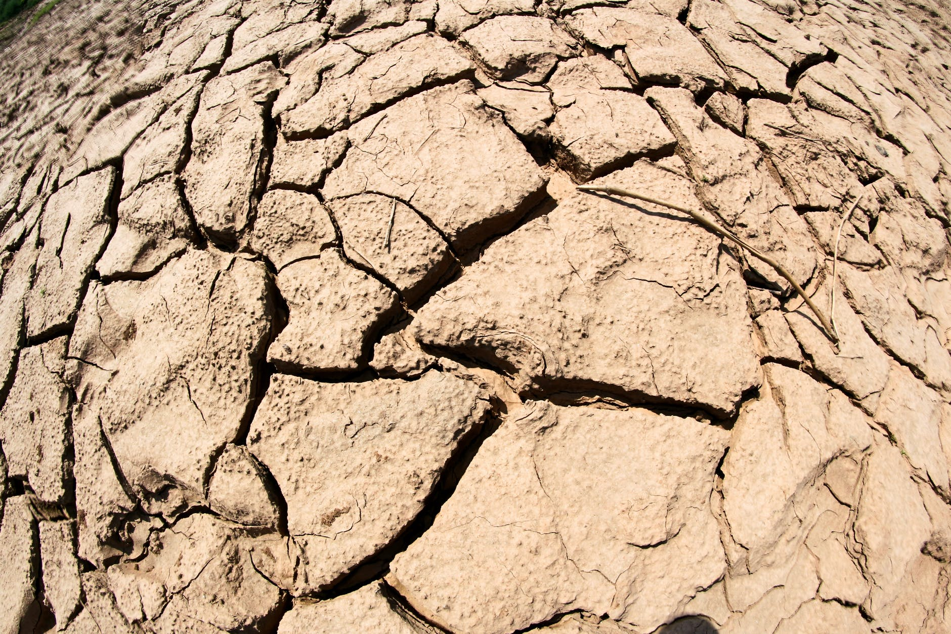 arid clay close up cracks
